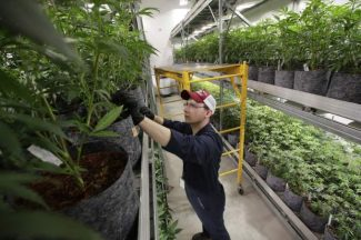 Colorado lawmakers taking second crack at bill that would allow publicly traded marijuana companies