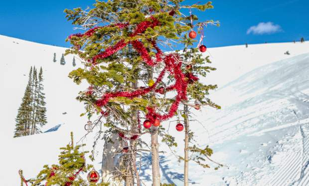A Christmas tree is decorated in the middle of China Bowl on Vail Mountain. The Back Bowls of Vail opened early this season.