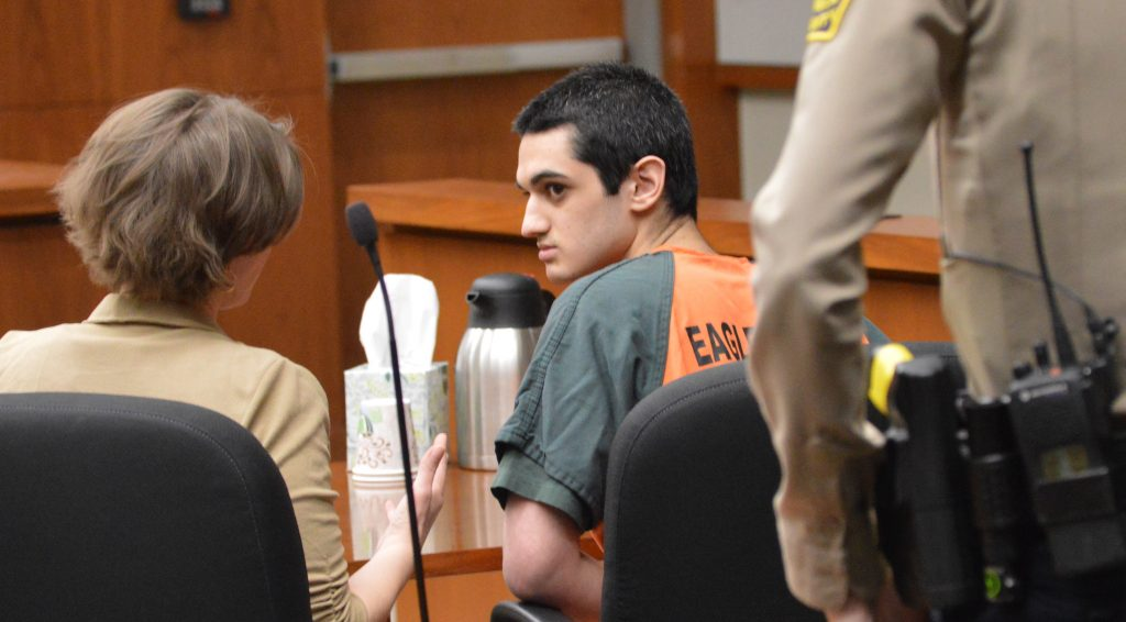 Andrew Young, 19, was sentenced Tuesday to 20 years in prison for stabbing a woman while she was jogging.