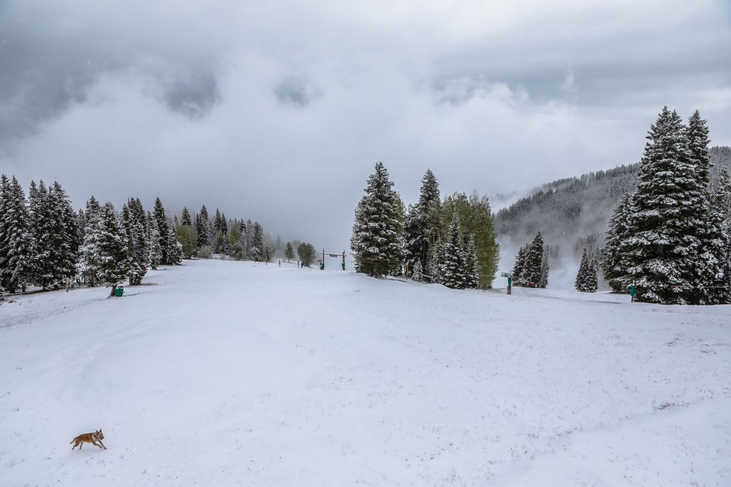 Snow at Beaver Creek Sunday, June 23, in the Vail Valley.