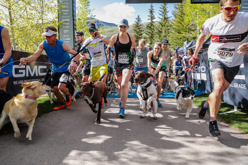 Runners and dogs begin the Rocky Dog Trail Run for the GoPro Mountain Games in Vail. This event was the first running event of the GoPro Mountain Games.