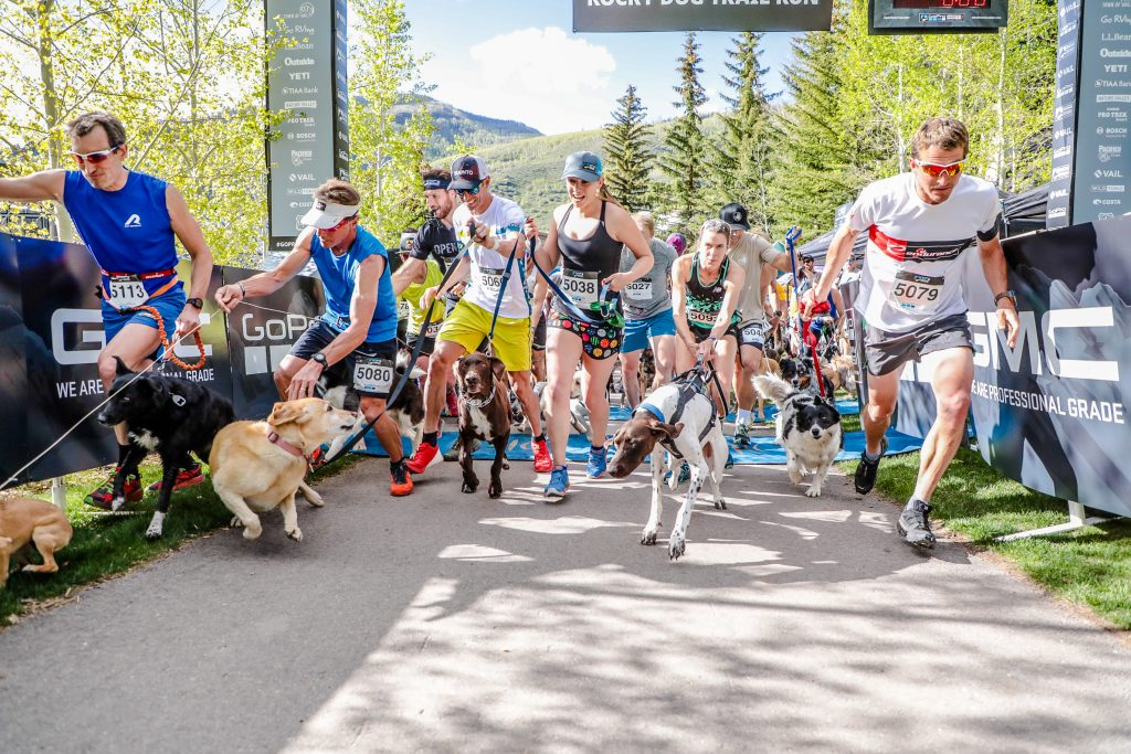 The Rocky Dog Trail Run begins for the GoPro Mountain Games Thursday in Vail. The dogs were anxious to begin
