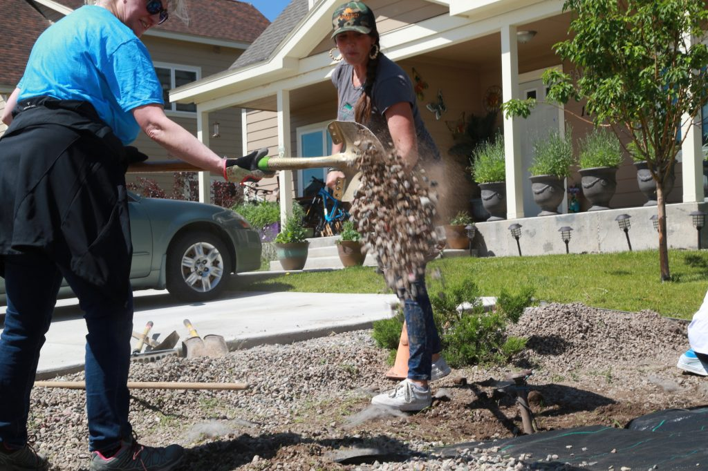 Plantivity, a local landscaping wholesaler, provided trees and shrubs for the fourth straight year.