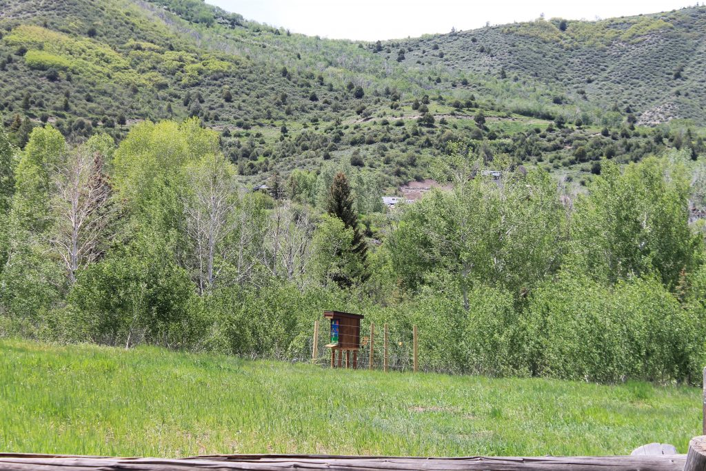 This European hive from the Knapp Ranch sits in a meadow along Lake Creek. Weiland wants to build a network of these hives extending throughout the Vail Valley.