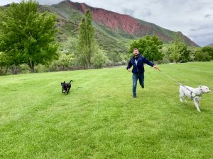 Koda comes home: How a lost Vail pup found its way back to its owners