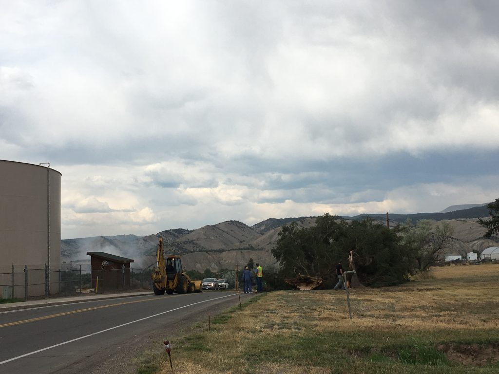 High winds blew over a tree, blocking Valley Road between Cooley Mesa Road and Bradford Lane. Smoke from the Walker Ranch fire can be spotted in the distance.