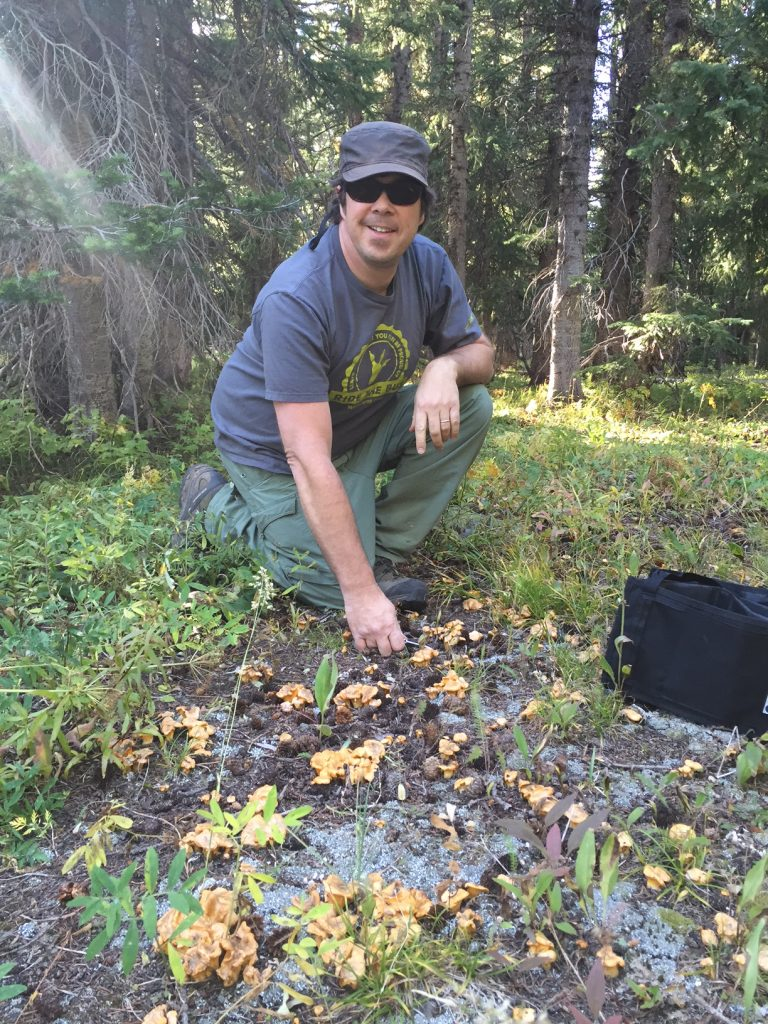 Trent Blizzard locates some chanterelles.