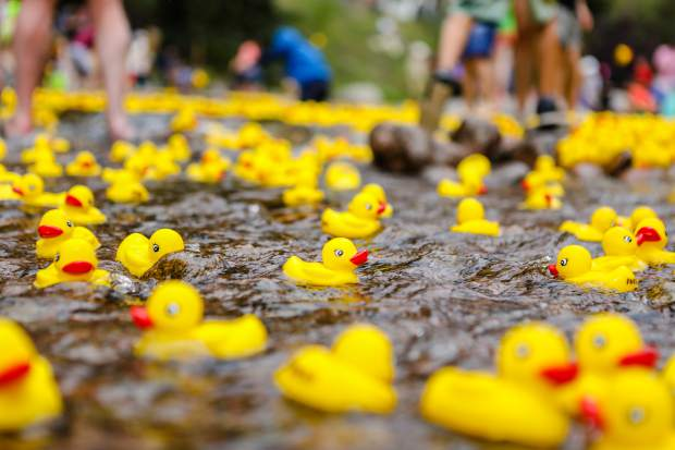 Gore Creek will turn into a sea of yellow ducks as the annual Vail Rotary Rubber Duck Race takes place on Labor Day.