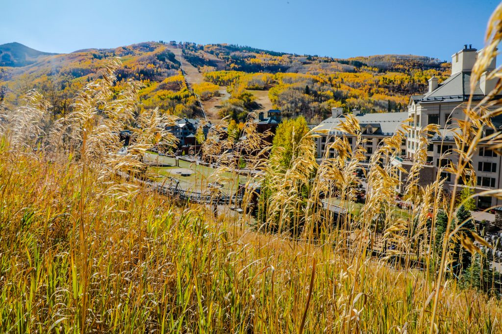 The colors pop on a Colorado bluebird day Monday in Beaver Creek. A cold front is forecasted Wednesday night, with the possibility of snow and winter-like temperatures.