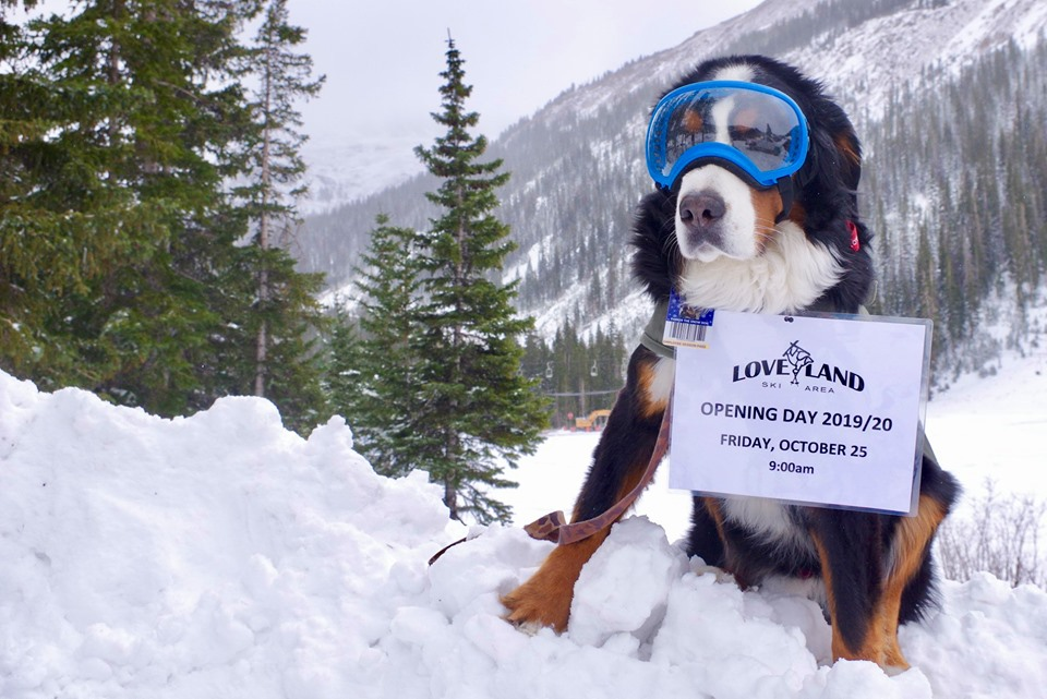 Loveland Ski Area's mascot, Parker the Snow Dog, is ready for the ski season to start at Loveland Ski Area. Loveland will start spinning lifts at 9 a.m. on Friday.