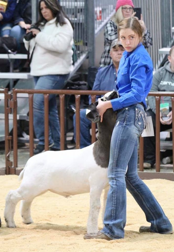 Faythe Eichler and her sister, Alex, are back in the show ring, competing this week in the National Western Stock Show.