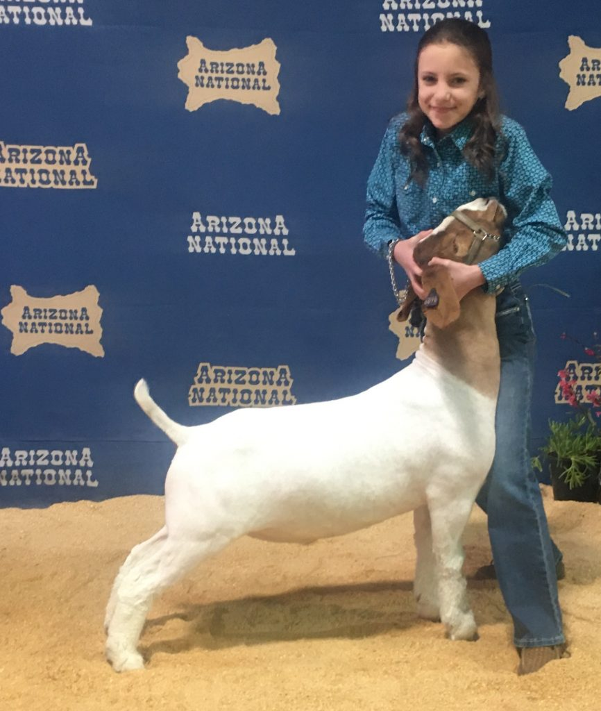 Alex Eichler and her sister Faythe are competing this week in the National Western Stock Show in Denver.