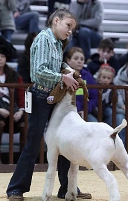 Alexandria Eichler and the rest of the Eagle County 4-H kids will be part of this year's 4-H Junior Livestock Auction on July 25. The auction moves online to stockshowauctions.com.