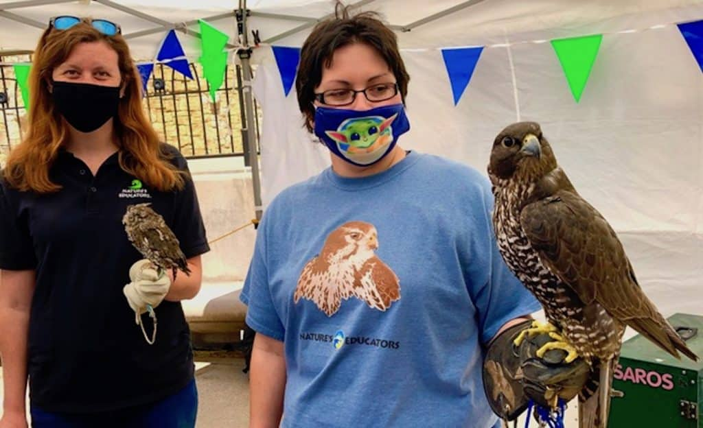 The Vail Family Fun Fair returns to Lionshead Village this weekend with socially distanced fun and games along with the incredible birds from Nature's Educators Foundation.