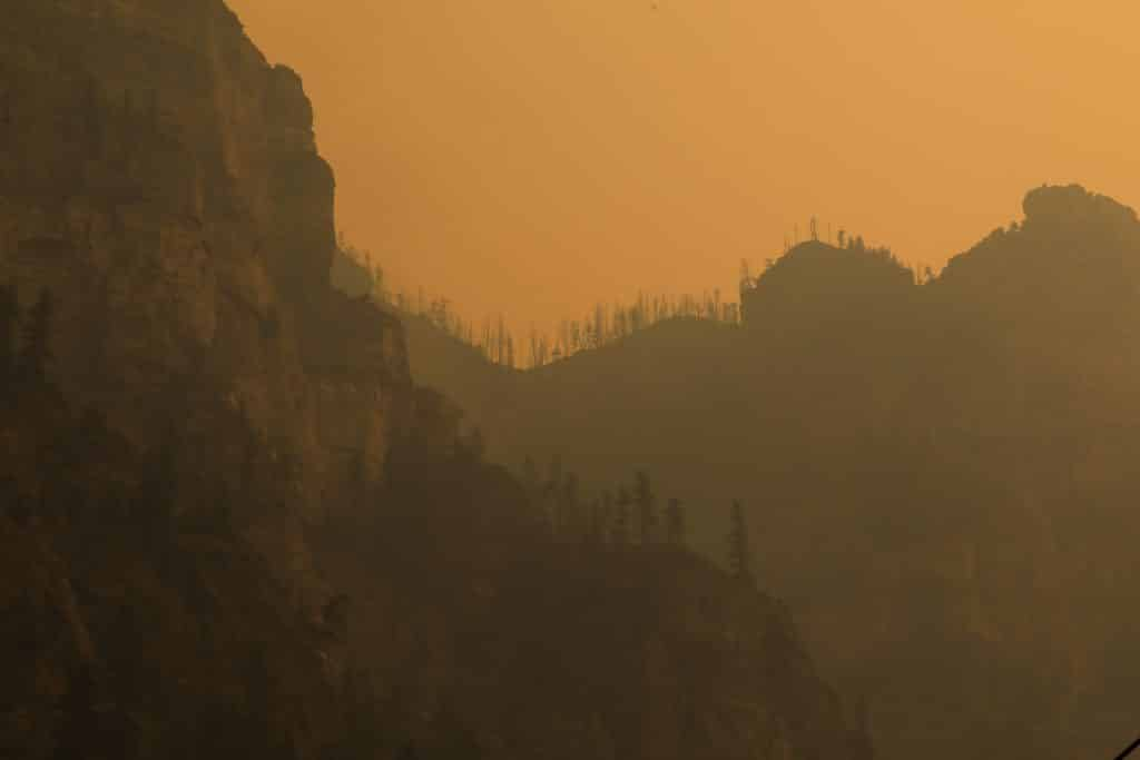 Burned trees line Glenwood Canyon from the Grizzly Creek Fire Sunday near Glenwood Springs.