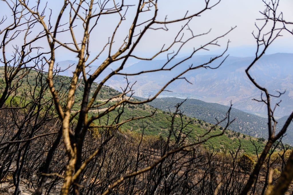 The Grizzly Creek fire was listed at 73% containment Sunday morning.