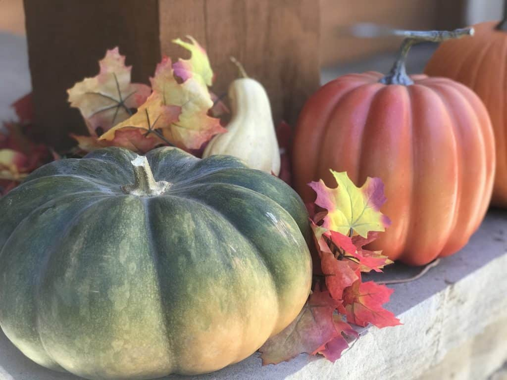 Come and get your pumpkins at the annual Village Market pumpkin patch to benefit Mountain Youth this Sunday from 10 a.m. to 1 p.m. at the Riverwalk Backyard.
